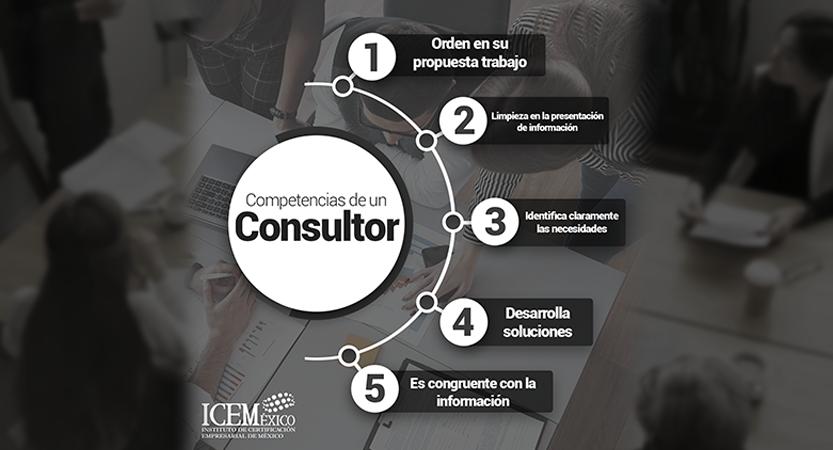 Infografía describiendo las competencias para un consultor.
